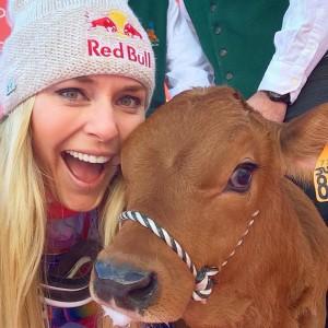 Vonn with her baby cow. Facebook